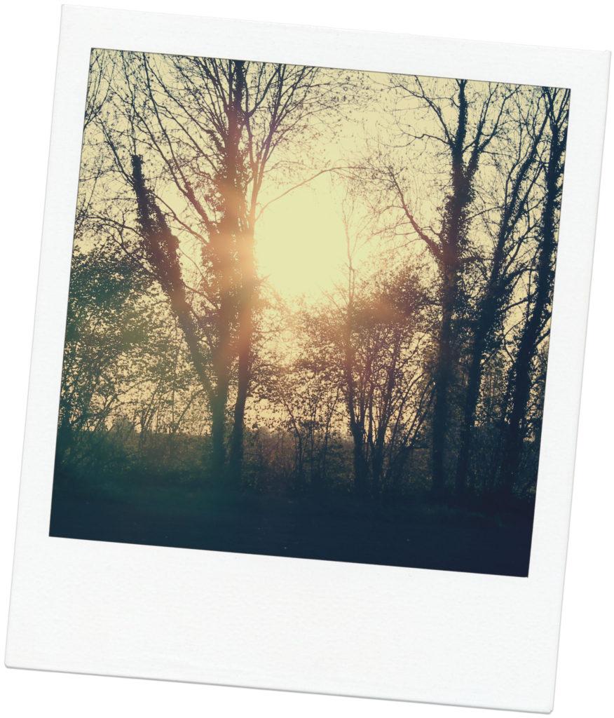 soleil26